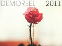 Wedding Demo Reel 2011